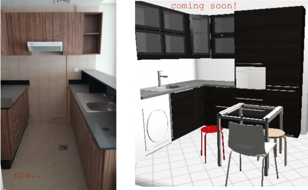 kitchen remodelling downtown, dubai designer Erika Pace, decor consultation
